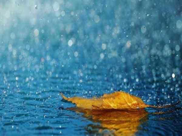 Ngủ mơ thấy mưa - Giải mã giấc chiêm bao thấy mưa có ý nghĩa gì